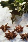 Aún-vida de la Navidad imágenes de archivo libres de regalías