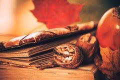 Aún-vida de la temporada de otoño Foto de archivo libre de regalías
