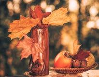 Aún-vida de la temporada de otoño Fotos de archivo