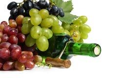 Aún-vida de la uva y del vino Imagen de archivo libre de regalías