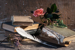 Aún-vida de los libros viejos Fotos de archivo libres de regalías