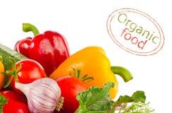 Aún-vida de los verdes orgánicos frescos y de las especias de las verduras Imágenes de archivo libres de regalías