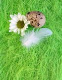 Aún-vida de Pascua con las flores, huevos, plumas en una fibra del sisal Imagen de archivo libre de regalías