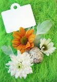 Aún-vida de Pascua con las flores, huevos, plumas en una fibra verde del sisal Imagen de archivo