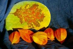 Aún-vida de piedra del otoño Fotos de archivo
