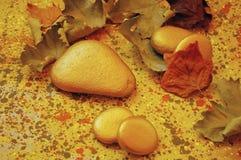 Aún-vida de piedra del otoño Foto de archivo