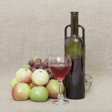 Aún-vida de una botella de vino y de fruta Imágenes de archivo libres de regalías