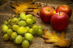 Aún-vida del otoño Foto de archivo libre de regalías
