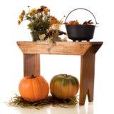 Aún-Vida del otoño Imágenes de archivo libres de regalías