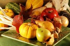 Aún-vida del otoño Fotografía de archivo libre de regalías