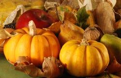 Aún-vida del otoño Imagen de archivo libre de regalías