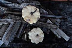 Aún-vida del otoño Imagenes de archivo