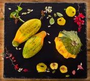 Aún-vida del otoño con la calabaza Imagen de archivo
