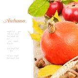 Aún-vida del otoño con la calabaza y las manzanas Imagenes de archivo
