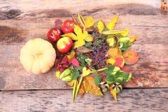 Aún-vida del otoño con la uva, las hojas y más salvajes Imagen de archivo libre de regalías