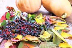 Aún-vida del otoño con la uva, las hojas y más salvajes Foto de archivo libre de regalías