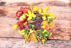Aún-vida del otoño con la uva, las manzanas y más salvajes Imagen de archivo
