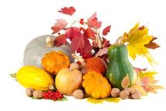Aún-vida del otoño con las calabazas Imagen de archivo