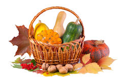 Aún-vida del otoño con las calabazas Fotos de archivo