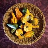 Aún-vida del otoño con las calabazas Foto de archivo