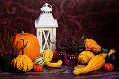 Aún-vida del otoño con las calabazas Fotografía de archivo