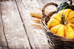 Aún-vida del otoño con las calabazas Imagen de archivo libre de regalías