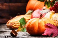 Aún-vida del otoño con las calabazas y el maíz Imagen de archivo