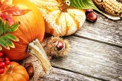 Aún-vida del otoño con las calabazas y el maíz Imágenes de archivo libres de regalías