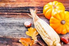 Aún-vida del otoño con las calabazas y el maíz Fotos de archivo