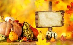 Aún-vida del otoño con las calabazas y las hojas Fotografía de archivo