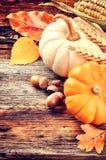 Aún-vida del otoño con las calabazas y las bellotas Fotografía de archivo