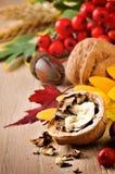 Aún-vida del otoño con las nueces Imagenes de archivo