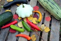 Aún-vida del otoño con las verduras maduras Fotos de archivo