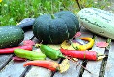 Aún-vida del otoño con las verduras maduras Imagen de archivo libre de regalías
