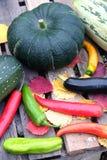 Aún-vida del otoño con las verduras maduras al aire libre Imagen de archivo libre de regalías