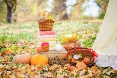 Aún-vida del otoño La cosecha Foto de archivo libre de regalías