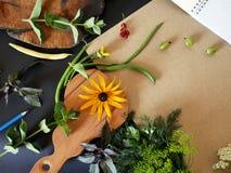 Aún-vida del verano del verdor, verduras, visión superior Fotos de archivo libres de regalías