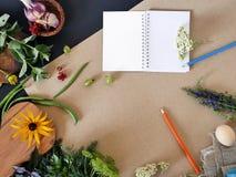 Aún-vida del verano del verdor, verduras, visión superior Fotografía de archivo