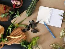 Aún-vida del verano del verdor, verduras, visión superior Foto de archivo libre de regalías