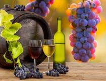 Aún-vida del vino Fotografía de archivo libre de regalías