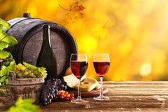 Aún-vida del vino Fotografía de archivo