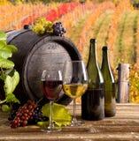 Aún-vida del vino Imágenes de archivo libres de regalías