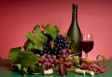 Aún-vida del vino rojo y de la uva Foto de archivo