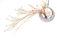 Aún vida floral con los flores del melocotón Fotos de archivo