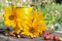 Aún vida floral otoñal Imagenes de archivo
