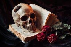 Aún vida gótica con el cráneo Imagen de archivo