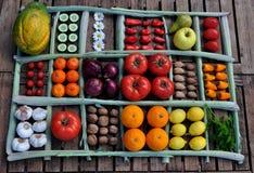 Aún vida grande de verduras en una tabla Fotografía de archivo