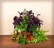 Aún vida hermosa con albahaca, apio, eneldo, mejorana, perejil, lechuga y la cereza de los tomates Imágenes de archivo libres de regalías