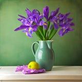 Aún vida hermosa con la flor del iris Foto de archivo libre de regalías
