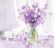 Aún vida hermosa con las flores de alarma Fotografía de archivo